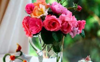 Значение розы по фэн-шуй