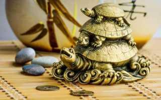 Символ черепаха значение по фэн-шуй