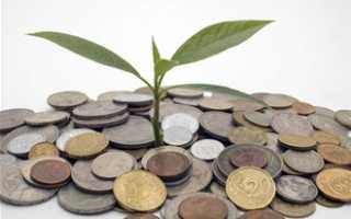 Где должно стоять денежное дерево по фэн-шуй