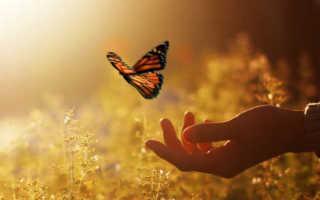 Счастье по фэн шуй 14 советов