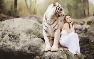 Фэн шуй белый тигр