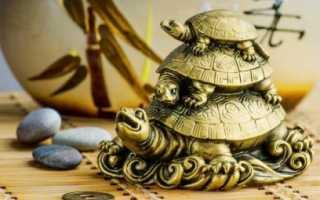 Черепаха с детенышем на спине по фэн шуй