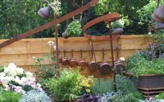Растения в саду по фэн шуй