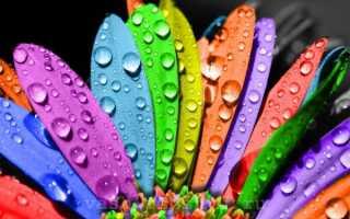 Плетут разными цветами по фэн шуй что